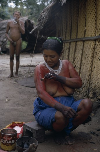 Colombia, North West Amazon, Tukano Indigenous People, Barasana Woman Paulina  Applying Red Achiote Fruit Body Paint To Arms And Upper Body In Preparation For Manioc Festival.  Hands Already Coloured Dark Purple To Wrists With We Dye From Boiled Leaves.  Tukano Sedentary Indian Tribe North Western Amazonia Body Decoration American Colombian Columbia Female Women Girl Lady Hispanic Indegent Latin America Latino South America Tukano : Stock Photo