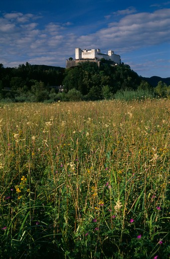 Stock Photo: 1850-23229 Austria, Salzburg, Hohensalzburg Fortress Situated On Densely Forested Hillside Above Meadowland.  Constructed In 1077 By Archbishop Gebhard.