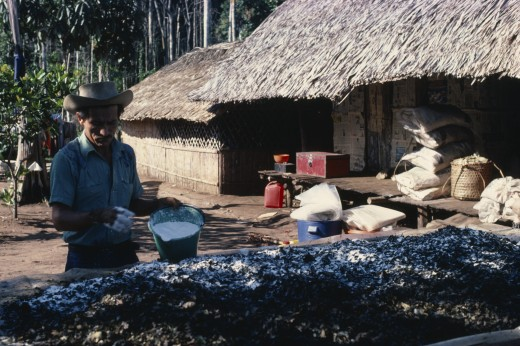 Colombia, Vaupes, 'Llanero Worker In Small N W Amazon Forest Cocaine Lab. Prepares Coca Leaves Adding Sodium Bicarbonate To Leach Cocaine Alkaloid Out Of Them As They ''Sweat'' In Sun For A Day.A Man Wearing A Hat Making Coca / Cocaine In The Process Of Applying Carbonate ' : Stock Photo