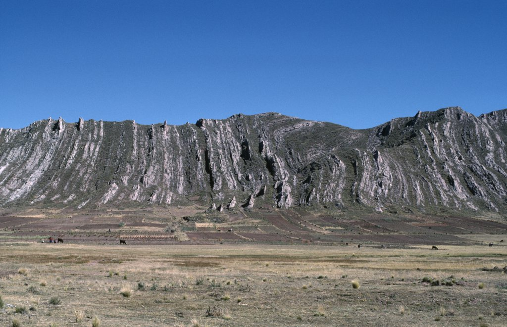 Bolivia, Altiplano, Vertically Folded Rock Strata Behind Agricultural Land With People And Cattle On The Ground : Stock Photo