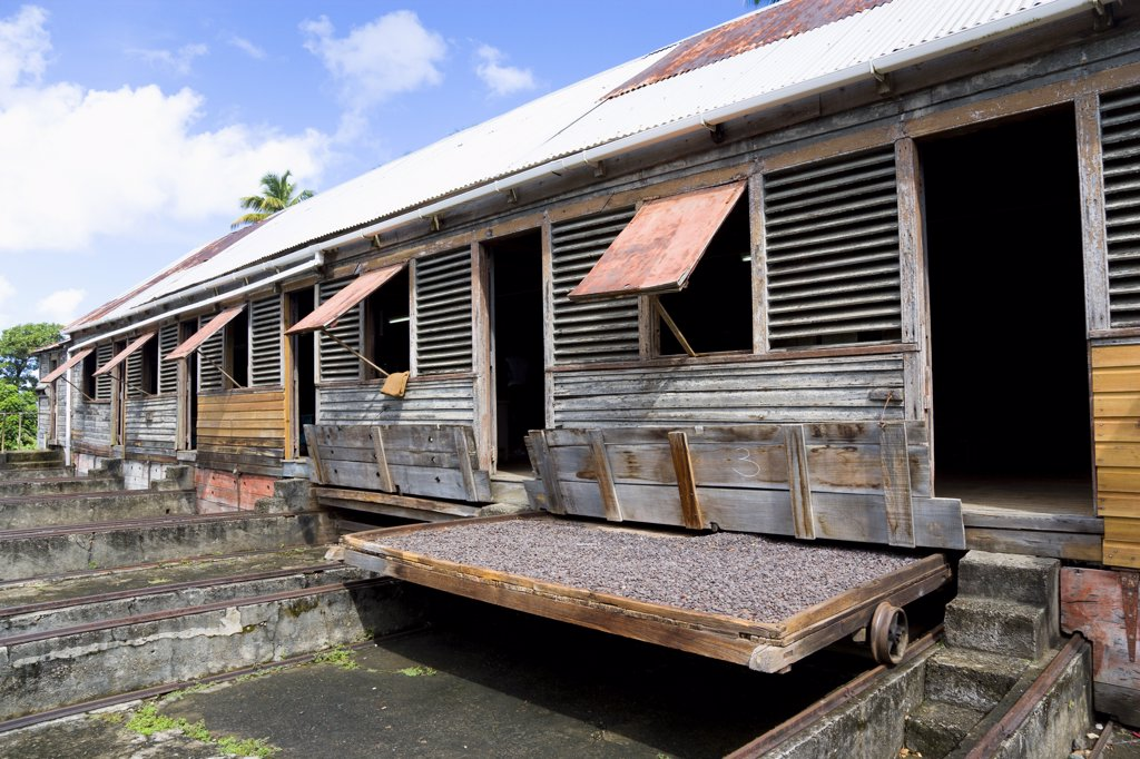 Stock Photo: 1850-26862 West Indies, Grenada, St John, Cocoa Beans Drying In The Sun On Retractable Racks Under The Drying Sheds At Douglaston Estate Plantation