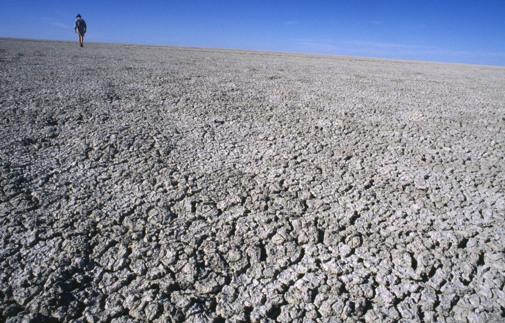 Namibia, Etosha National Park, Etosha Pan , Distant Figure Walking Across Dry And Cracked Expanse Of The Etosha Pan Which Only Collects Water In The Wet Season. : Stock Photo
