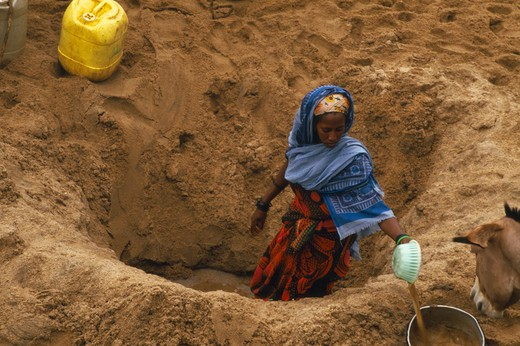 Kenya, General, Not In Library Boran Woman Digging For Water In A Dry Riverbed : Stock Photo