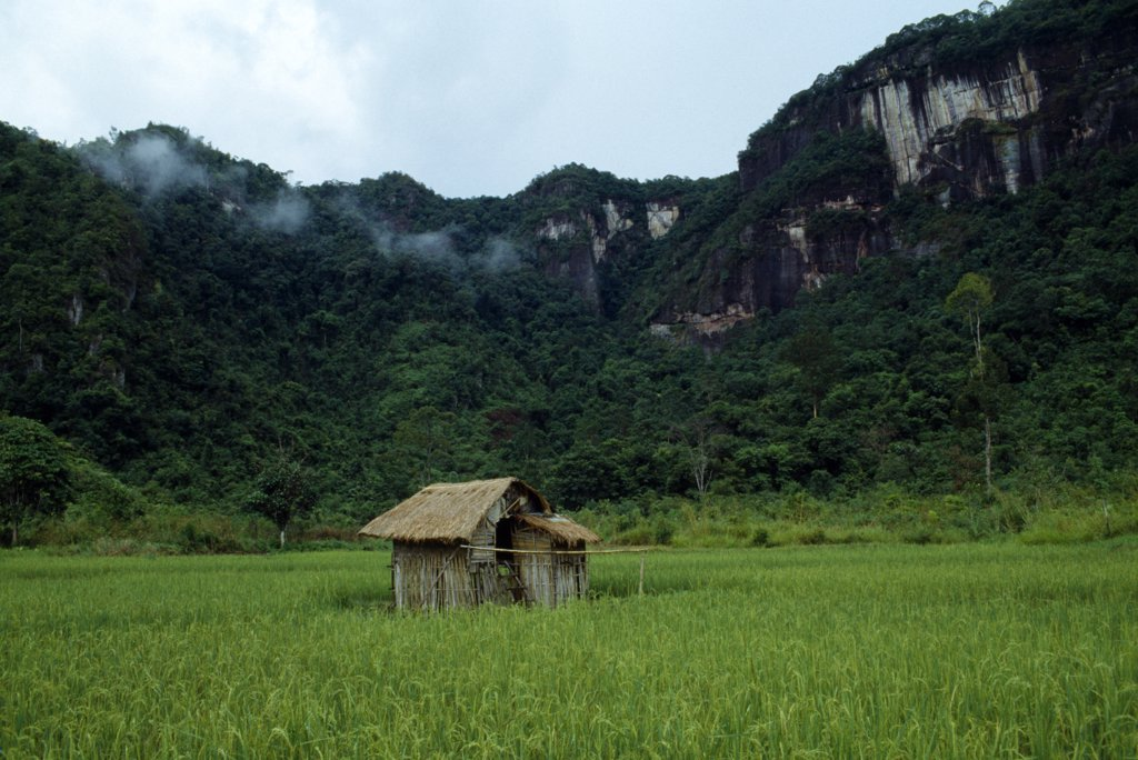 Indonesia Sumatra Haran Valley, Near Bukittinggi : Stock Photo