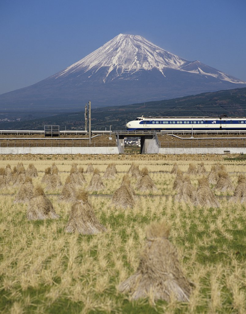 Stock Photo: 1850-31056 Japan Honshu Mount Fuji, Mount Fuji with Shinkansen bullet train passing through rice fields