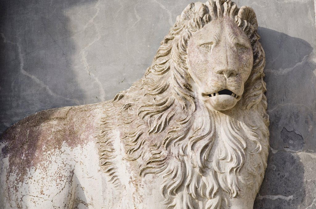 Italy Veneto Venice, Centro Storico  Plaster sculpture of lion : Stock Photo