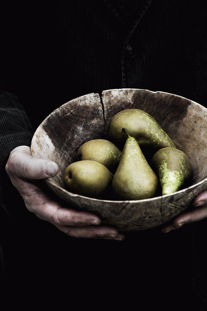 Pyrus communis, Pear : Stock Photo