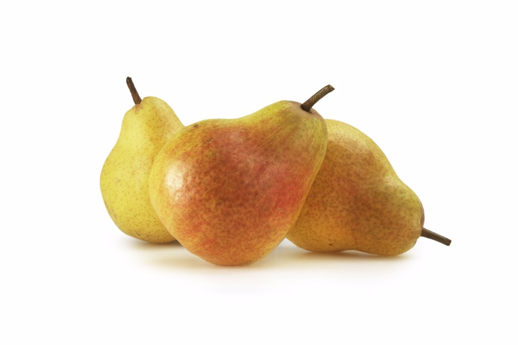 Pyrus communis, Pear : Stock Photo