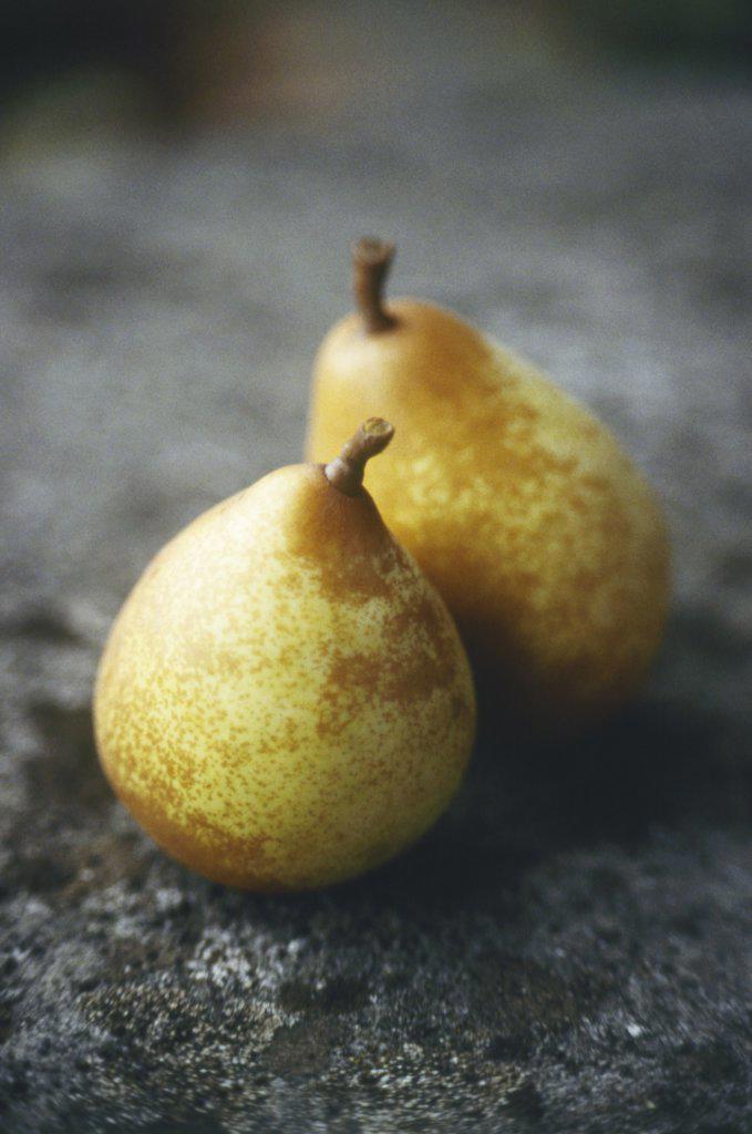 Stock Photo: 1850-36892 Pyrus communis, Pear