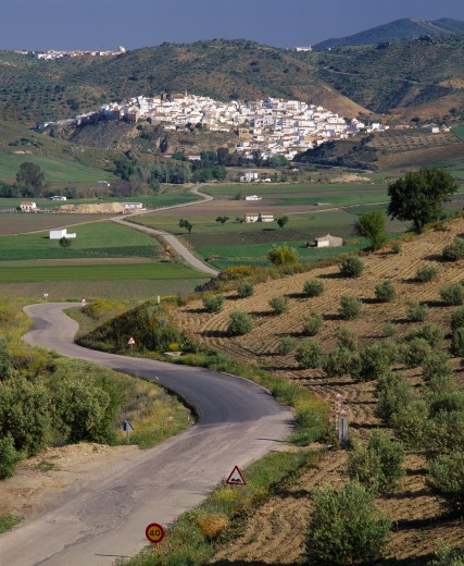 Spain, Andalucia, Malaga Province, 'North Ronda, Olives & Farmfields With Road Leads To White Village ' : Stock Photo