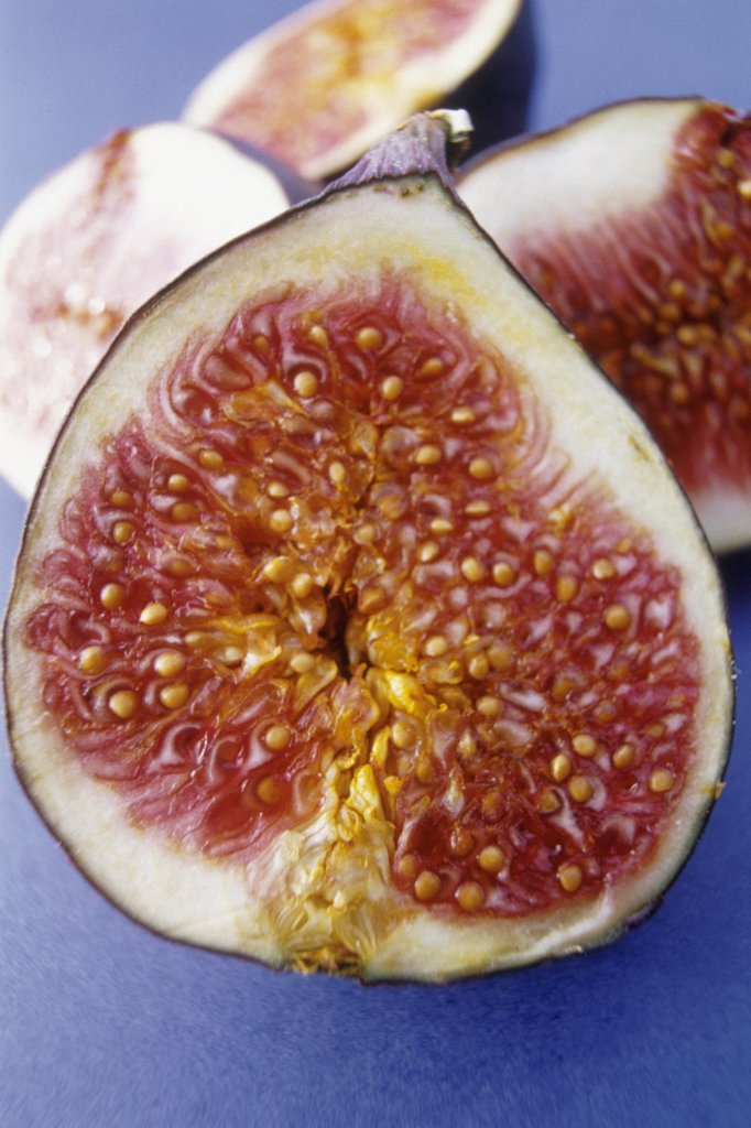 Ficus carcia, Fig : Stock Photo