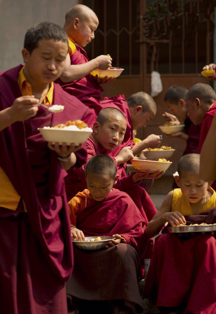 India,  Sikkim,  Buddhist Monks at lunch break. : Stock Photo
