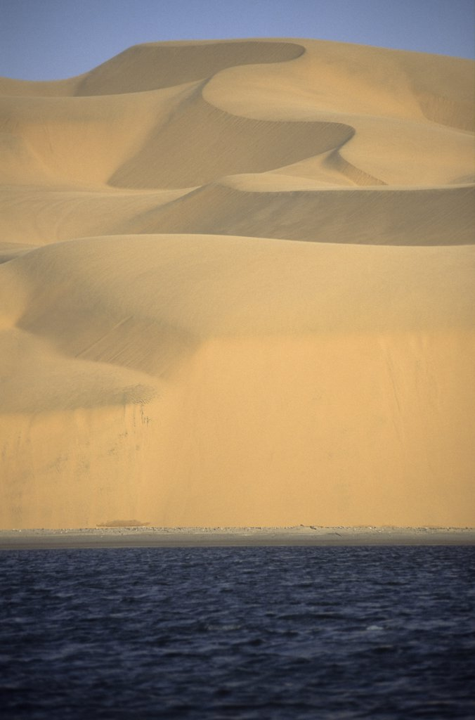 Stock Photo: 1850-44321 Namibia, Namib , Naukluft Desert, Sand dunes of the Langevaan a 1000 foot high wall of sand where the desert meets the Atlantic ocean. Access is restricted due to Diamond mining activity by DeBeers.