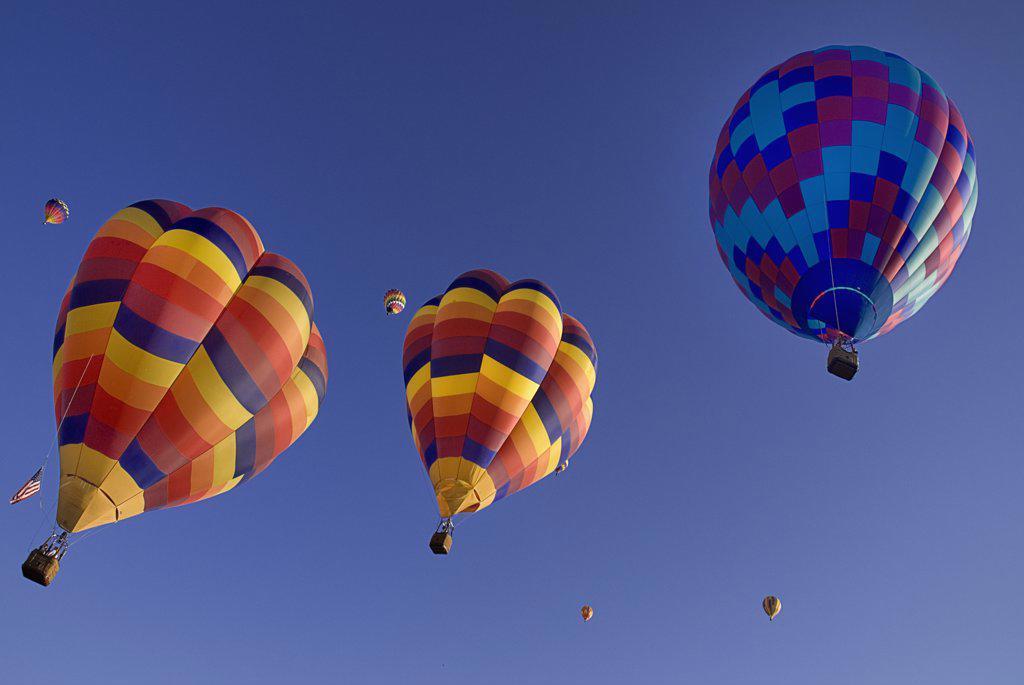 Stock Photo: 1850-45004 Annual balloon fiesta colourful hot air balloons ascending.USA New Mexico Albuquerque