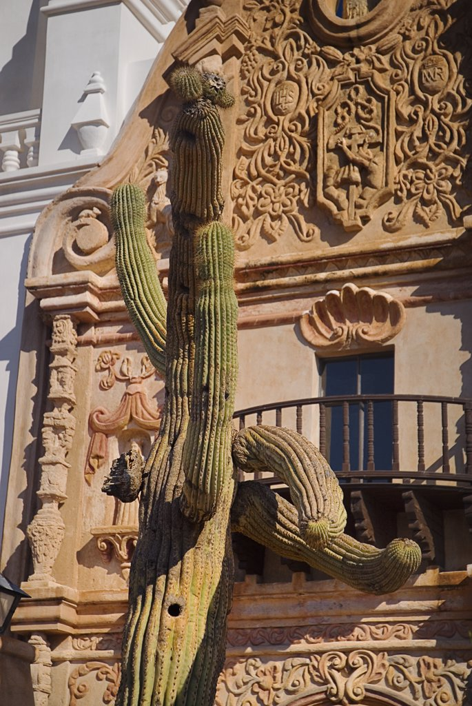 Stock Photo: 1850-45050 Mission Church of San Xavier del Bac. Detail of balcony and carved window surround with cactus in foreground.USA Arizona Tucson