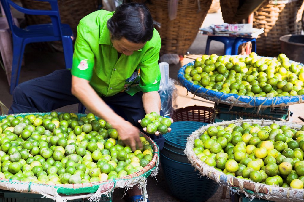 Stock Photo: 1850-45689 Thailand, Bangkok, stall holder displaying limes in Chinatown market.