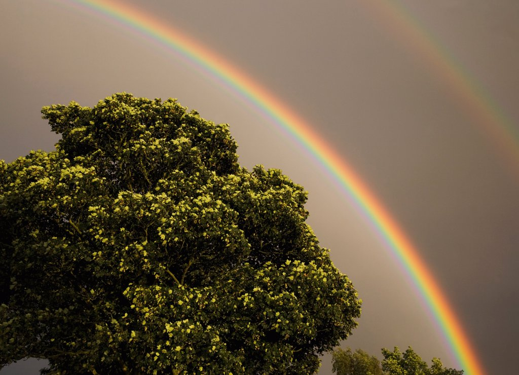 UK, Lincolnshire, Double rainbow against storm clouds. : Stock Photo