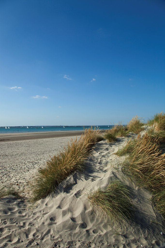 Stock Photo: 1850-45881 England, West Sussex, West Wittering Beach, East Head, Sand dunes and beach with sunshine and blue sky