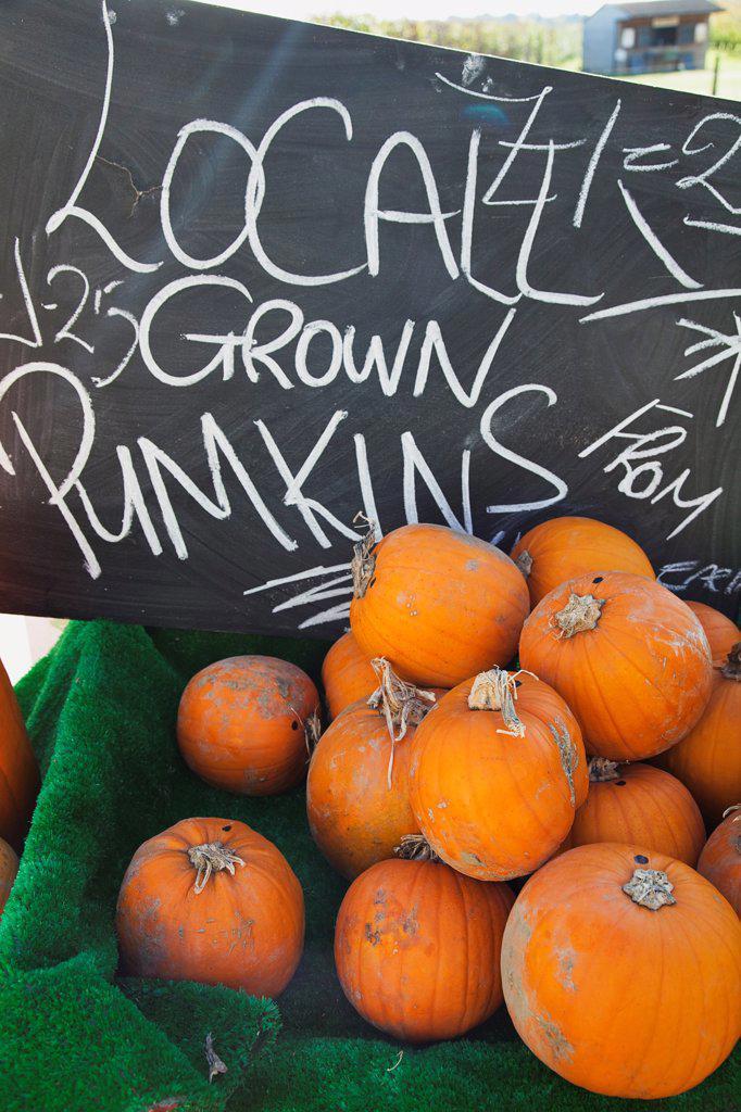 Food, Fruit, Pumpkins for sale at Grange Farms market store. : Stock Photo