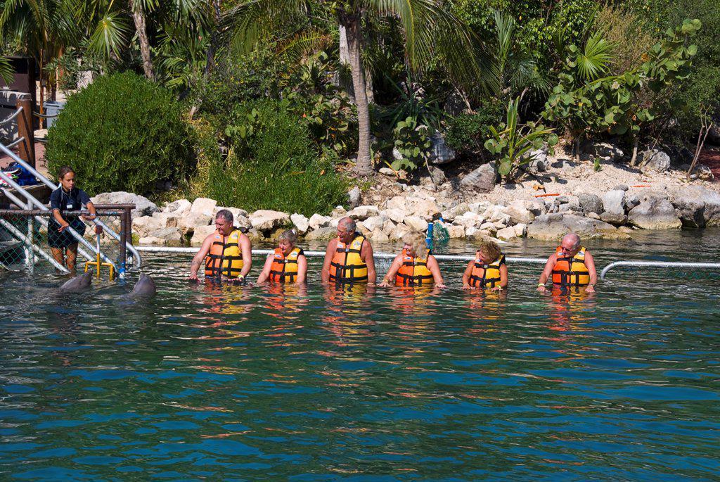 Mexico, Quintana Roo, Puerto Aventuras, Puerto Aventuras Marina,  Dolphin Experience. : Stock Photo