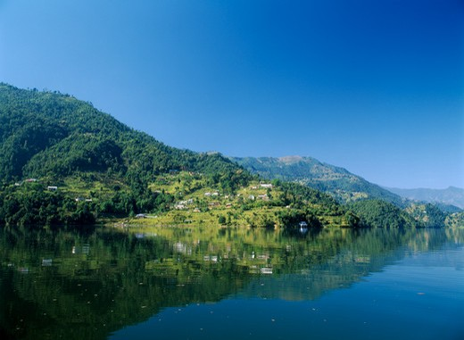 Stock Photo: 1850-5855 Nepal, Annapurna Region, Pokhara, View Over Lake Phewa With Reflected Terrace Hillside And Trees.