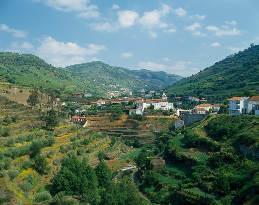 Stock Photo: 1850-5876 Portugal, Douro Valley, Santa Marta, View Over Terraced Hillside Towards White Painted Village With Tiled Rooftops.