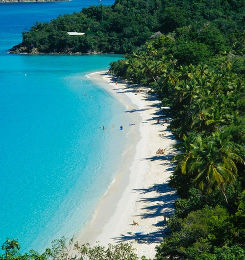 Stock Photo: 1850-6310 West Indies, Us Virgin Islands, St Johns, 'Trunk Bay. View Over Tree Covered Coastline With Bright Blue Water And Narrow, Curved, Sandy Beach With Distant Sunbathers And Swimmers.  '