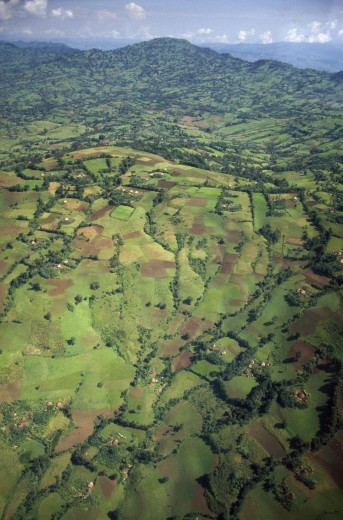 Ethiopia, South West, Agriculture, Aerial View Over Farmland. Cultivated Land : Stock Photo