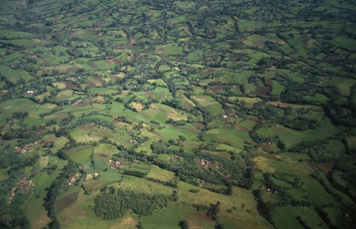 Ethiopia, South West, Agriculture, Aerial Landscape Over Fields Of Crops And Lush Vegetation. : Stock Photo