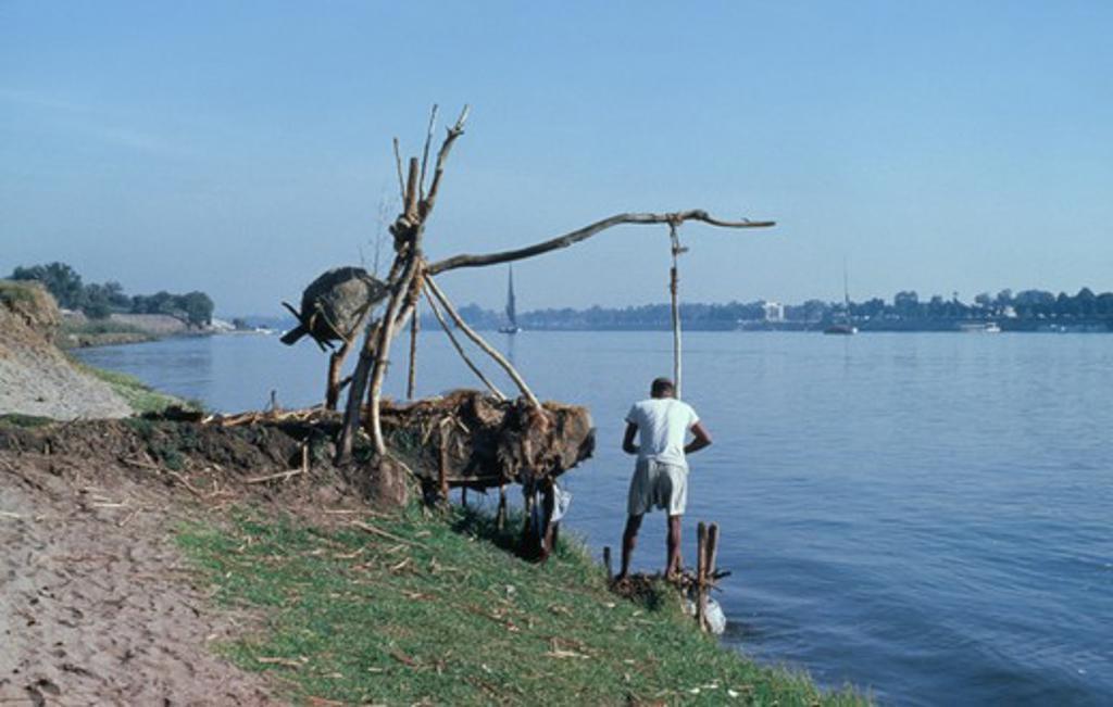 Egypt, River Nile, Shadouf Irrigation. : Stock Photo
