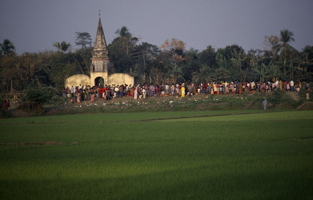 Stock Photo: 1850-9123 Bangladesh, Aricha, View Over Rice Fields Towards Crowds Gathered Around Old Hindu Temple At Sunset.