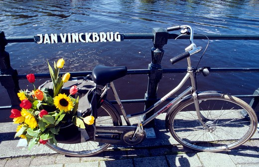 Cycle with tulips Amstel Amsterdam : Stock Photo
