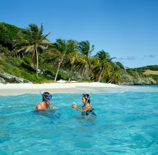 Snorkeling in the fabulous Tobago Cays in the Grenadines Caribbean : Stock Photo