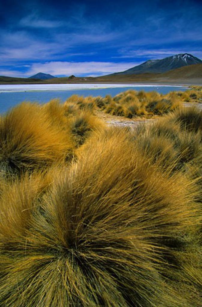 Bolivia, , General, Mountain scenery : Stock Photo