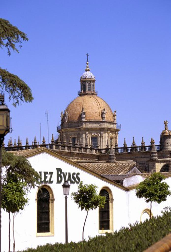 Stock Photo: 1885-1834 Spain, Andalucia, Jerez De La Frontera, The Colegiata