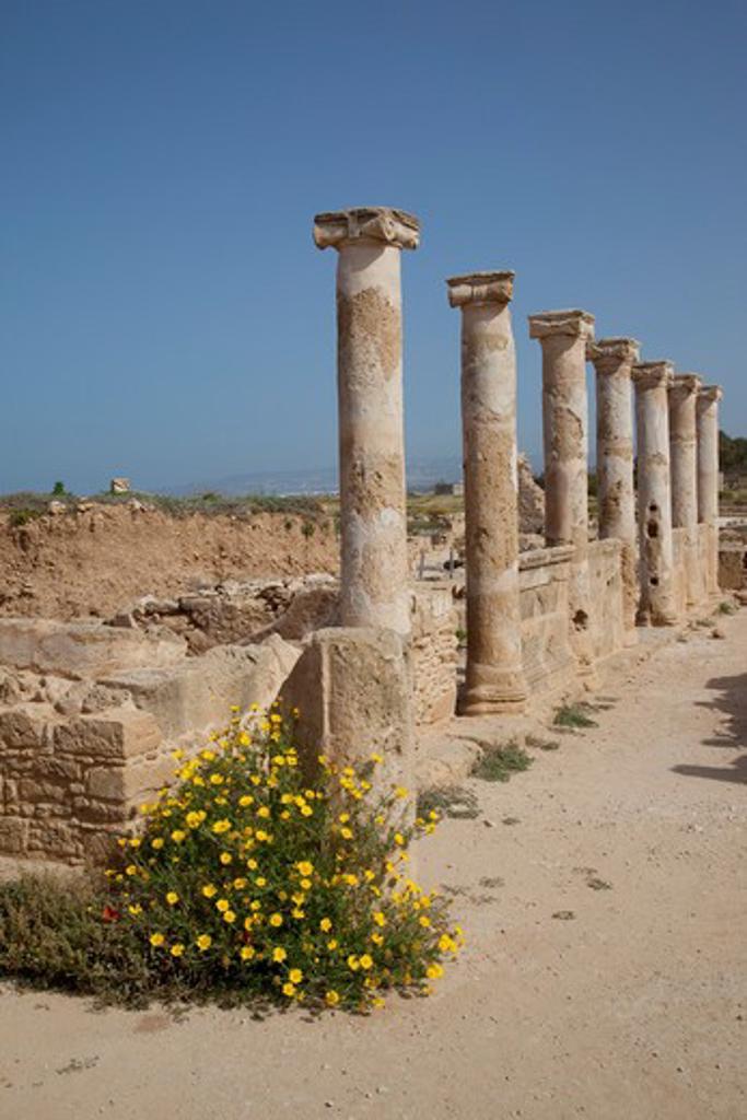 Cyprus, South Cyprus, Paphos, Roman Pillars : Stock Photo