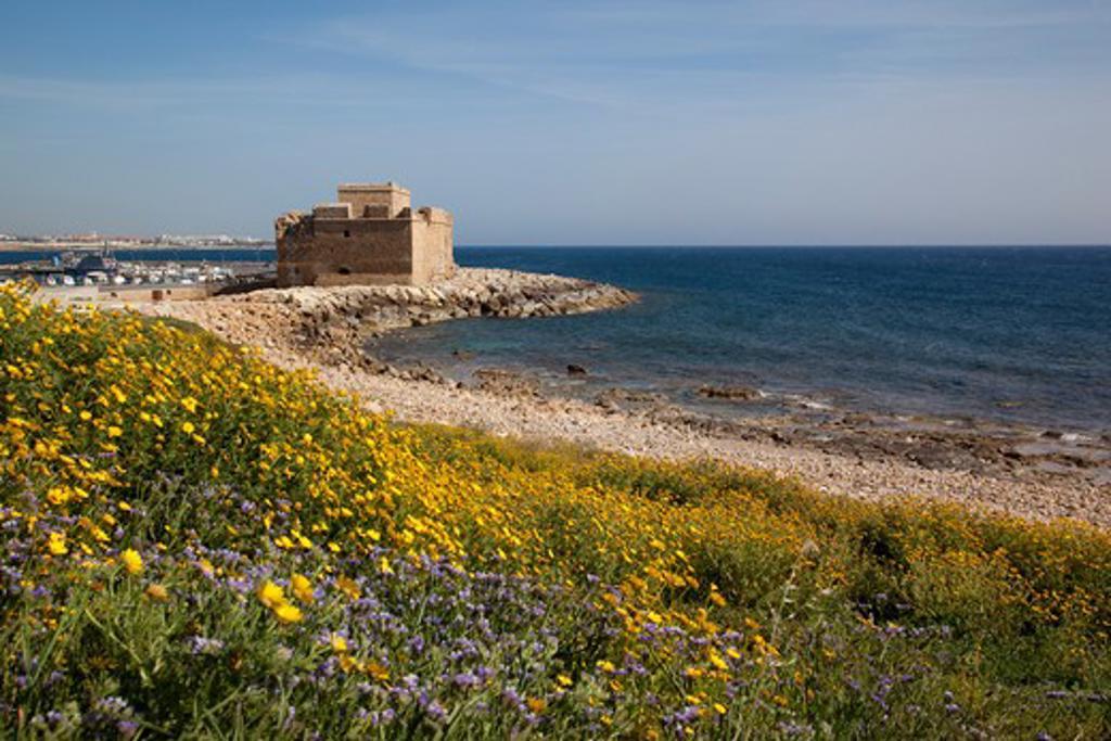 Cyprus, Kato Paphos, Paphos, Castle & flowers : Stock Photo