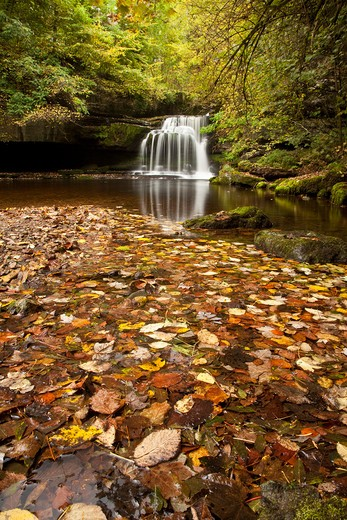 UK - England, North Yorkshire, West Burton Falls at Autumn, Wensleydale, Yorkshire Dales National Park : Stock Photo