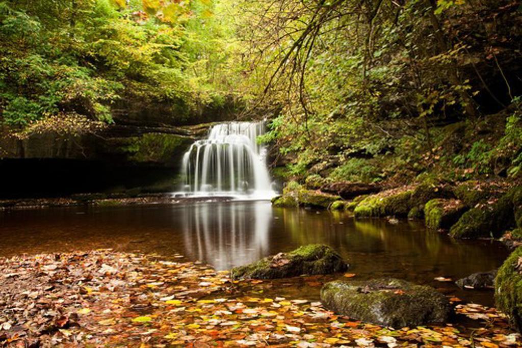 Stock Photo: 1885-21800 UK - England, North Yorkshire, West Burton Falls at Autumn, Wensleydale, Yorkshire Dales National Park