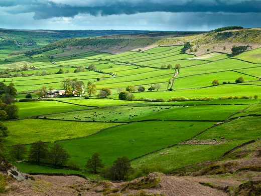 UK - England, Yorkshire, Little Fryupdale, Spring over Little Fryupdale : Stock Photo