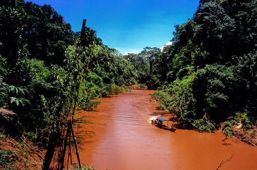 Stock Photo: 1885-22499 Peru, Red Amazon tributary River Manu in Manu National Park - showing rainforest canopy and mineral coloration after rains