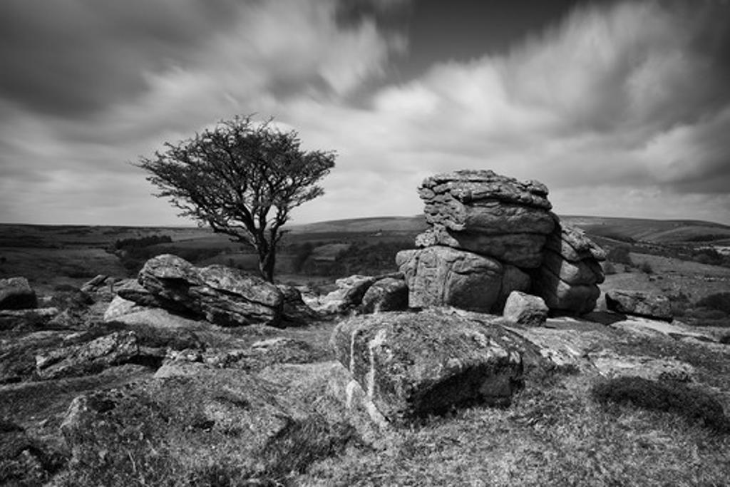 UK - England, Devon, Dartmoor National Park, Saddle Tor : Stock Photo