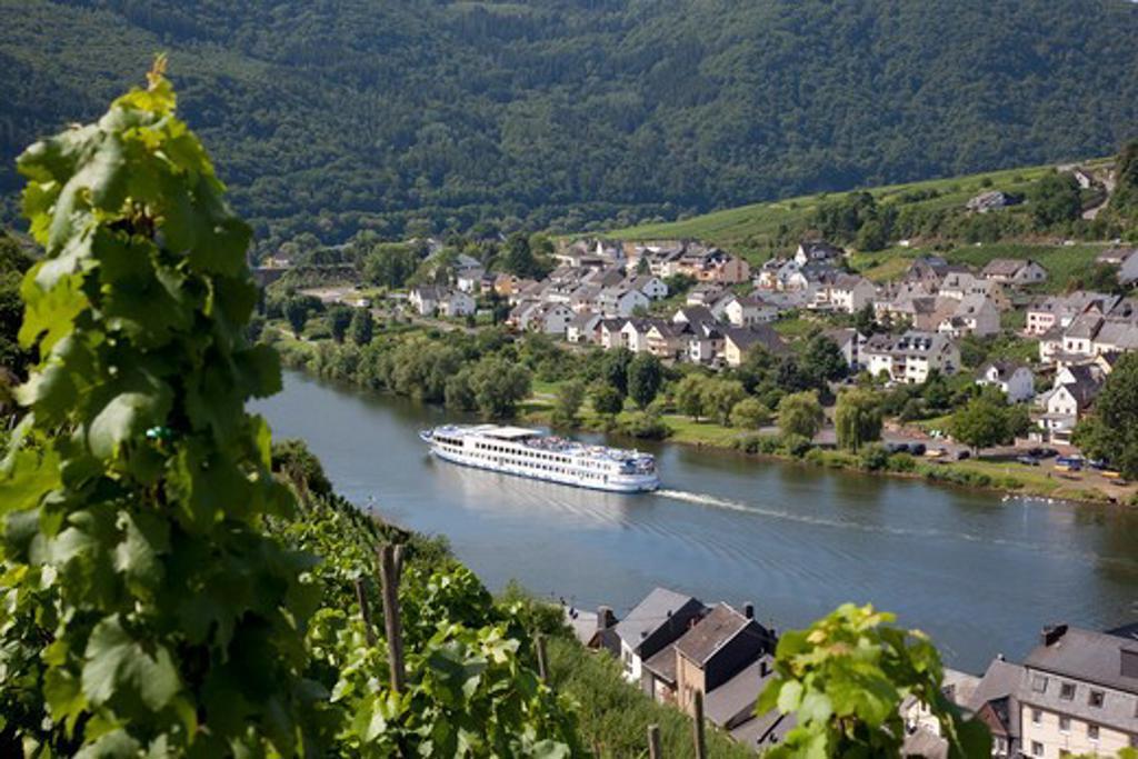 Germany, Rhineland-Palatinate, Koblenz, View of Zell-Merl Village & Church from Vinyard : Stock Photo