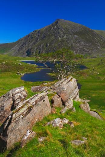 Stock Photo: 1885-22943 UK - Wales, Gwynedd, Snowdonia, Pen yr ole from llyn idwal