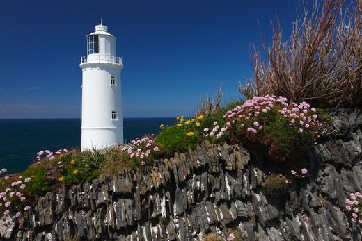 Stock Photo: 1885-23036 UK - England, Cornwall, Trevose Head, Trevose head lighthouse