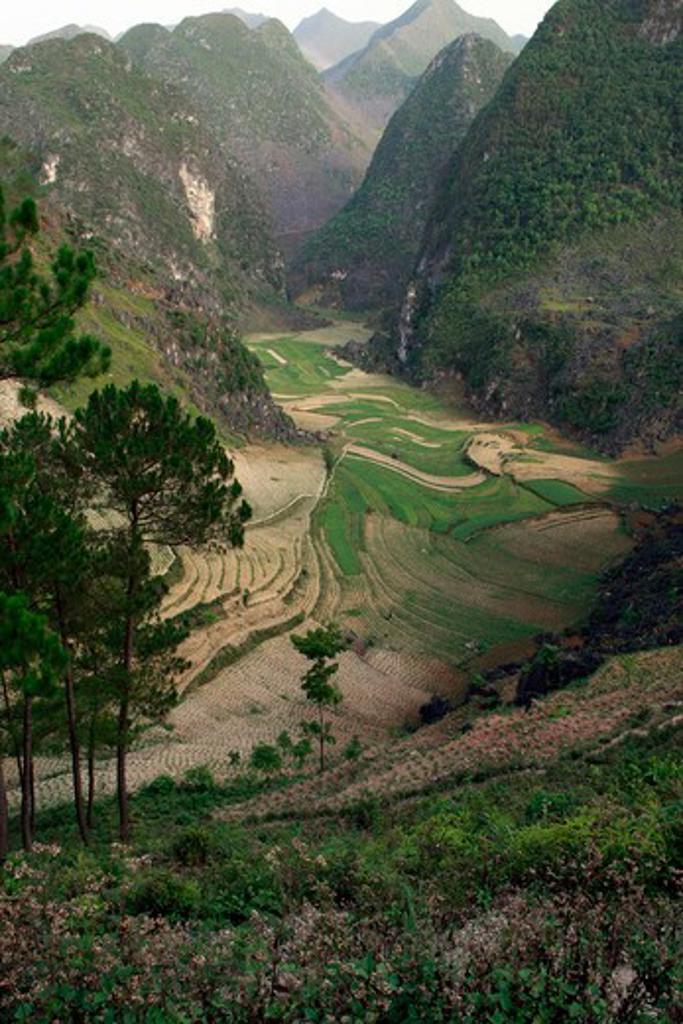 Vietnam, Ha Giang - near, Mountain scenery : Stock Photo