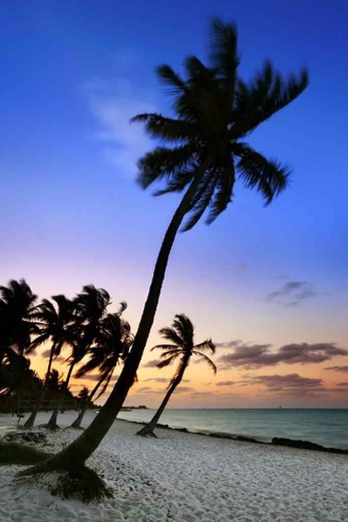 Stock Photo: 1885-24516 USA, Florida, Key West, Smathers Beach at dawn