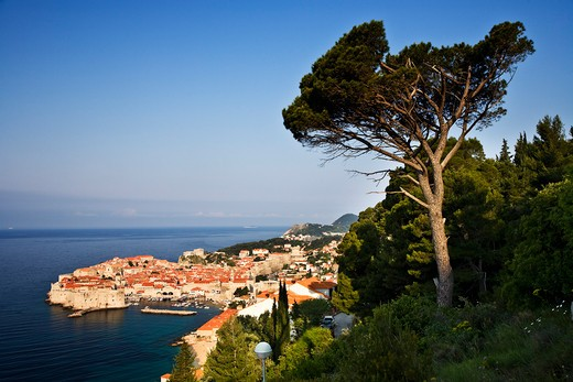 Croatia, Dalmatia, Dubrovnik, View over the city : Stock Photo