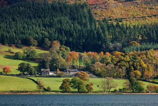 Stock Photo: 1885-26914 UK- England, Cumbria, Bassenthwaite Lake, Bassenthwaite Lake in autumn