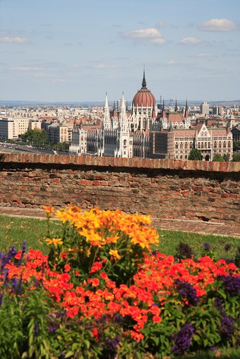 Stock Photo: 1885-27074 Hungary, Budapest, City skyline and flowers